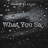 What You Say by Mario Eleksen
