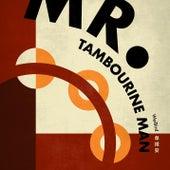 Mr. Tambourine Man by Wei Bird