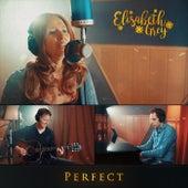 Perfect de Elisabeth Grey
