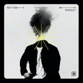 Why Should I (feat. Quinten Coblentz) by Roy Tosh