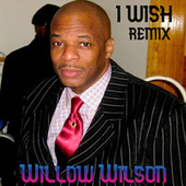 I Wish (Remix) by Willow Wilson