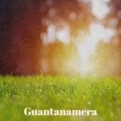 Guantanamera von Various Artists