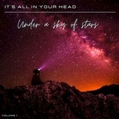 It's All in Your Head, Vol. 1: Under a Sky of Stars by Various Artists