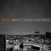Wrapped Around Your Finger von Pymlico