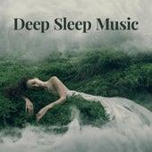 Deep Sleep Music by Various Artists