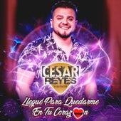 Llegue para quedarme en tu corazon de Cesar Reyes y La Farra