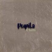 Pupila von Chilli