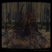 The Wilderness by Tyler John Hartman