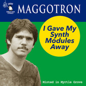 I Gave My Synth Modules Away by Maggotron