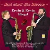 Rot sind die Rosen by Erwin