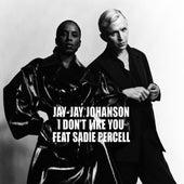 I Don't Like You by Jay-Jay Johanson