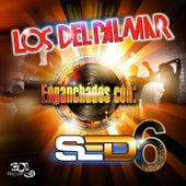 Enganchados Con Sed 6 by Los Del Palmar