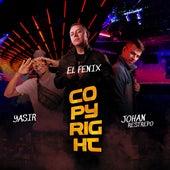 Copyright by Fenix
