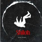 Shiloh Dynasty: