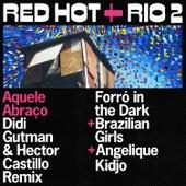 Aquele Abraço (Didi Gutman & Hector Castillo Remix) de Forro In The Dark