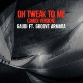 Oh Tweak to Me (Gaudi Version) by Groove Armada