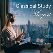 Classical Study: Mozart fra Various Artists