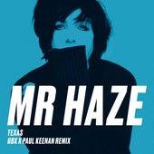 Mr Haze (GBX & Paul Keenan Remix) de Texas