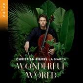 Wonderful World di Christian-Pierre La Marca