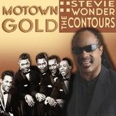 Motown Gold de Stevie Wonder