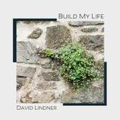 Build My Life (Solo Piano Instrumental) de David Lindner