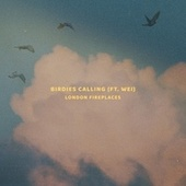 Birdies Calling de London Fireplaces