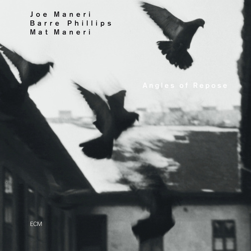 Angles Of Repose by Joe Maneri