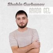 Arada Gel von Shahin Gurbanov