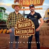 Agro Meração de Antony & Gabriel