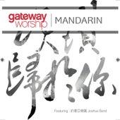 頌讚歸於你 (Live) von Gateway Worship