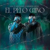 El Pelo Chino by Gerardo Ortiz