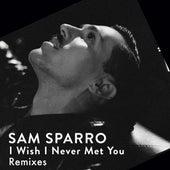 I Wish I Never Met You - EP (Remixes) von Sam Sparro