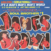 It's A Man's Man's Man's World de James Brown