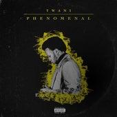 Phenomenal by Twani