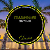 Trampoline de RhythmDB