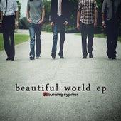 Beautiful World - EP by Burning Cypress