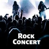 Rock Concert de Various Artists