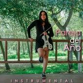 Pareja Del Año (Cover) de La Vid Violin