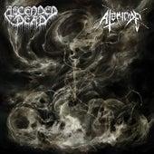 Ascended Dead / Atomicide Split de Ascended Dead