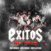 Exitos (En Vivo) by Grupo Fernandez