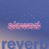 slowed + reverb de Slowed Radio