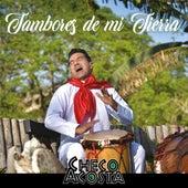 Tambores de Mi Tierra by Checo Acosta