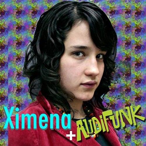 Fué Por Tí (feat. Audifunk) by Ximena Sariñana
