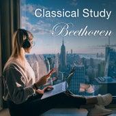 Classical Study: Beethoven di Various Artists