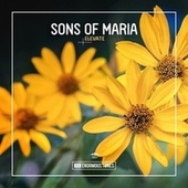 Elevate by Sons of Maria