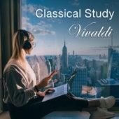 Classical Study: Vivaldi von Various Artists