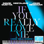 If You Really Love Me (How Will I Know) (MistaJam Remix) by David Guetta