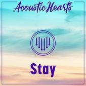 Stay de Acoustic Hearts