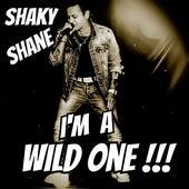 I'm a wild one!!! van Shaky Shane