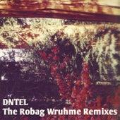 The Robag Wruhme Remixes de Dntel